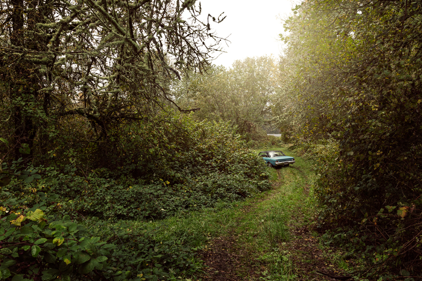 River Road: Milepost 38, 2015 Archival pigment print 20 x 30 inches, edition of 12 28 x 42 inches, edition of 3