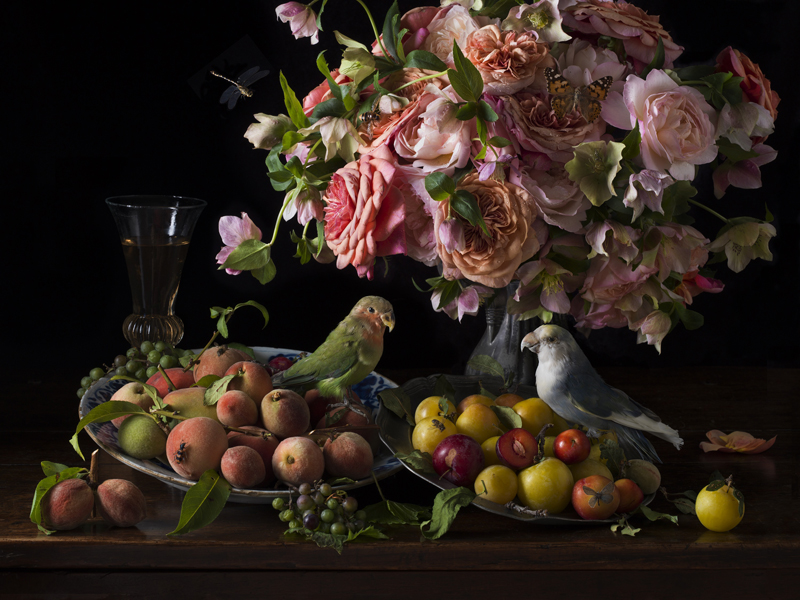 Paulette Tavormina   Birds and Bees , 2018 Archival pigment print  15 x 20 inches, edition of 15 22.5 x 30 inches, edition of 7 36 x 48 inches, edition of 5