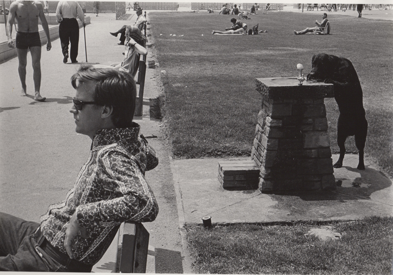 Ed Sievers   Untitled (dog drinking out of water fountain) , c. 1970's Vintage silver print 8 x 10 inches