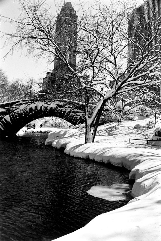Alfred Eisenstaedt    Central Park After a Snowstorm, New York , 1959  Silver print  24 x 20 inches  Edition of 250