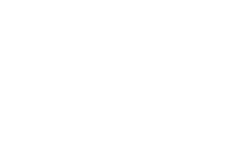 The Professional Wingman®