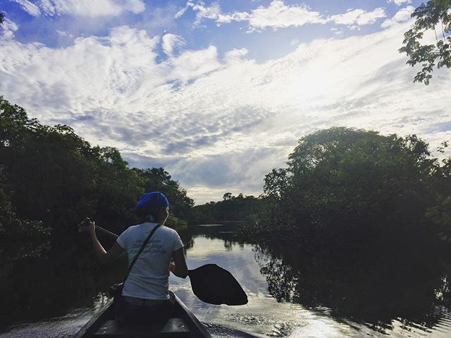 Slow and steady // Tahuayo tributary, Northern Amazon Basin