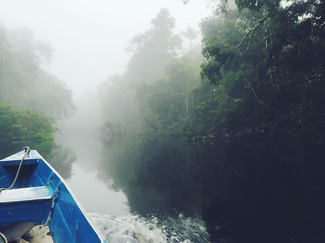 On the river // Tahuayo Region, Peru