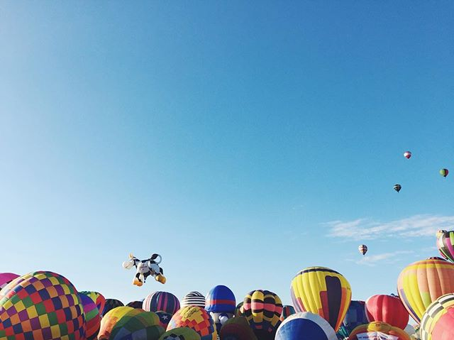 Moovin on up // Albuquerque International Balloon Fiesta, NM