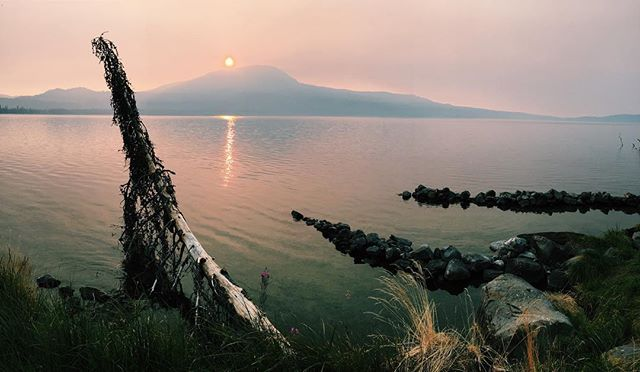 Autumn haze // Diamond Lake, OR