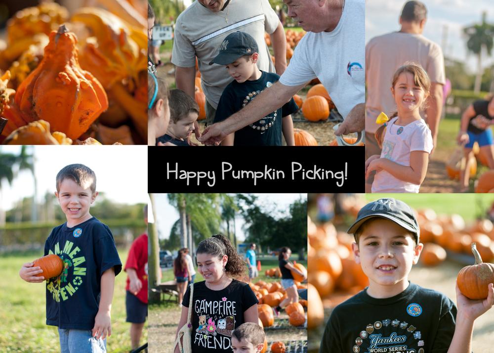 pumpkinP1.jpg