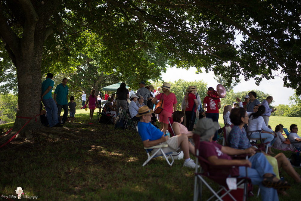 AMFPicnic2015wm (2 of 307).JPG