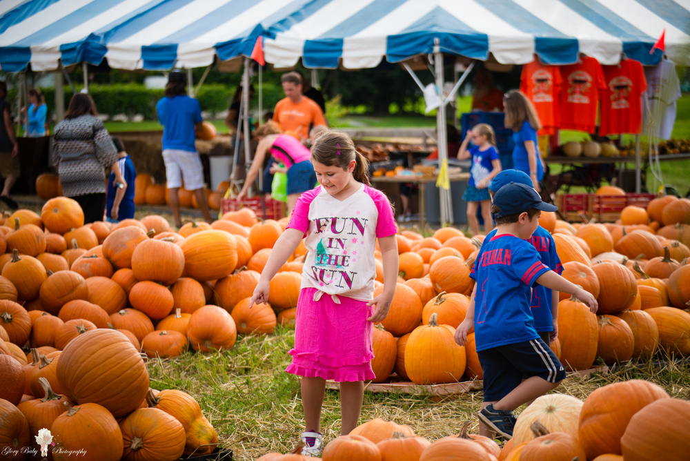 PumpkinPicking2015wm (2 of 64).JPG