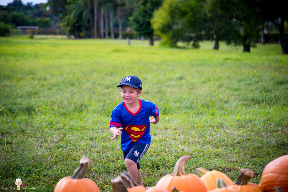 PumpkinPicking2015wm (10 of 64).JPG