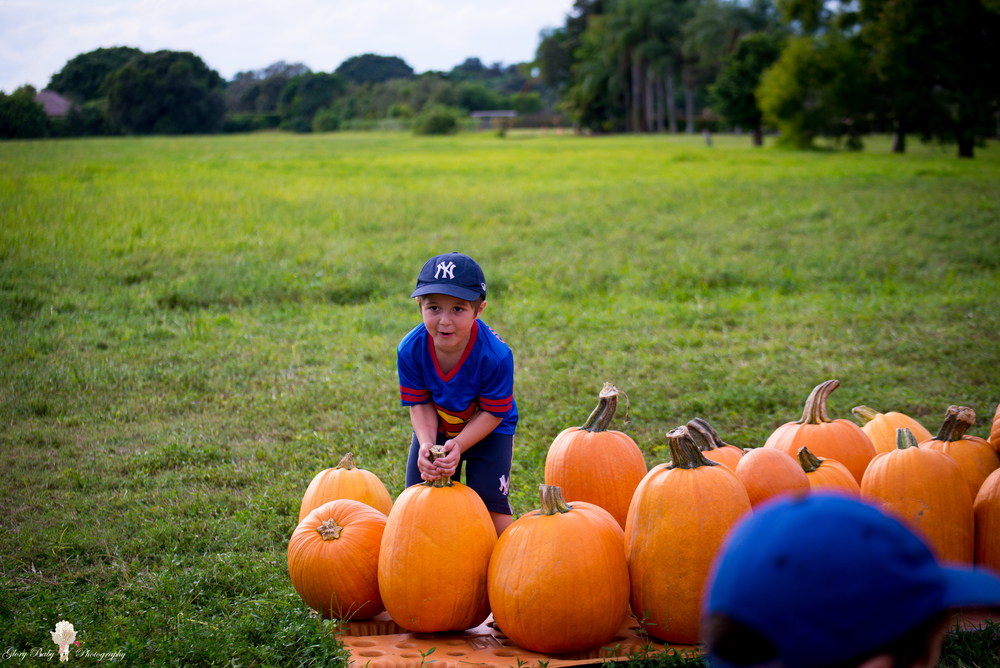 PumpkinPicking2015wm (12 of 64).JPG