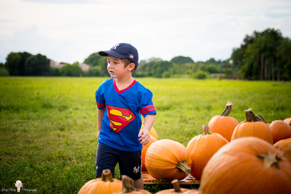 PumpkinPicking2015wm (13 of 64).JPG