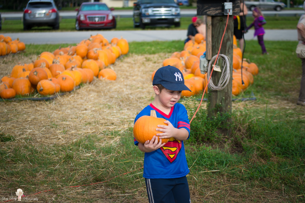 PumpkinPicking2015wm (20 of 64).JPG