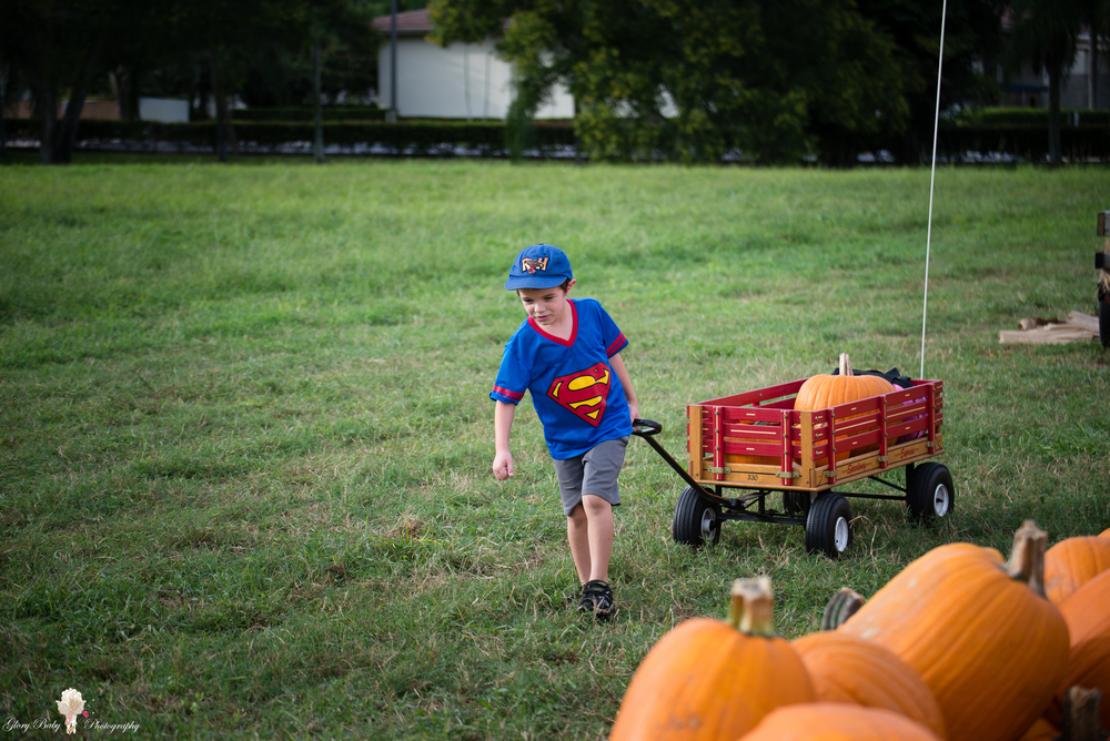 PumpkinPicking2015wm (23 of 64).JPG