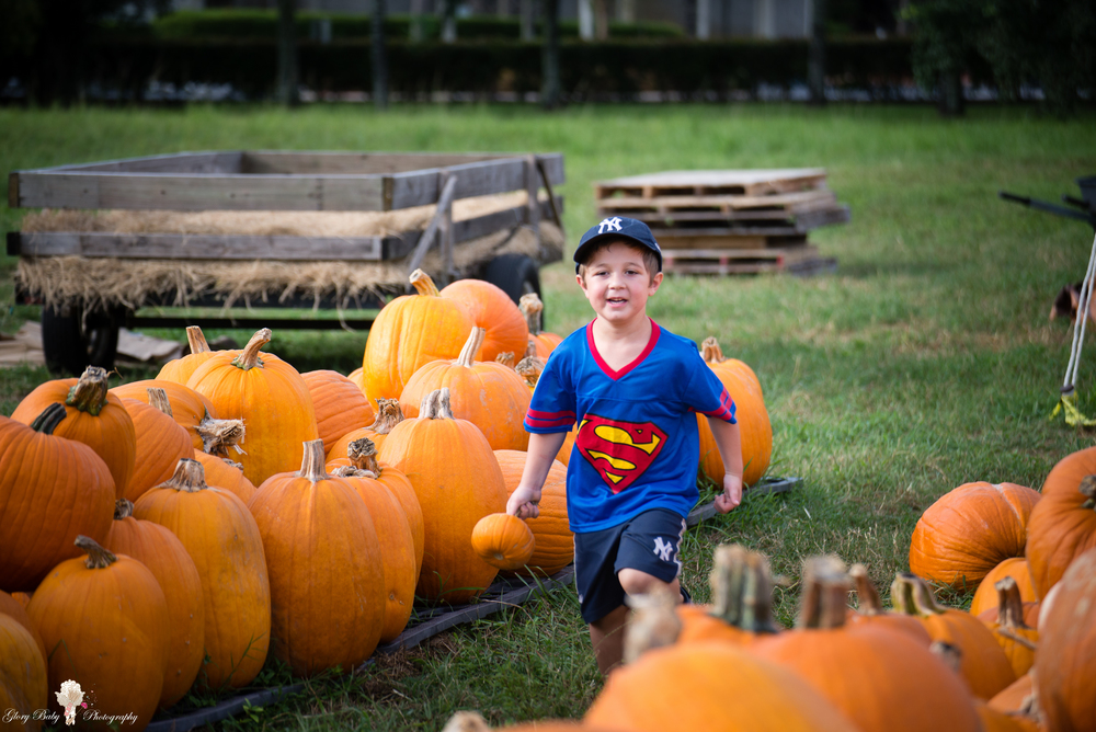 PumpkinPicking2015wm (26 of 64).JPG