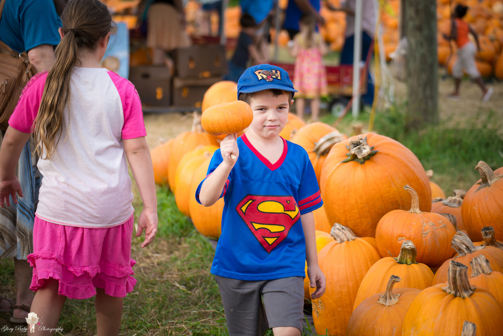 PumpkinPicking2015wm (44 of 64).JPG