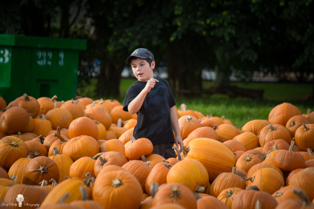 PumpkinPicking2015wm (53 of 64).JPG