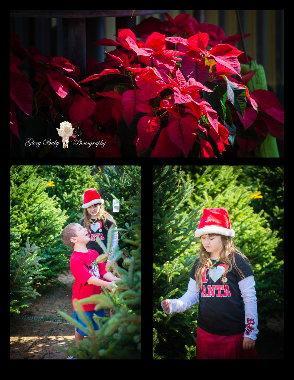 OhChristmasTree2015Prints2.jpg