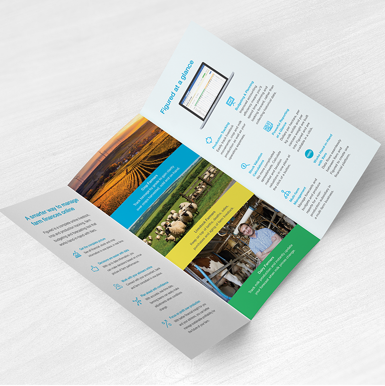 Figured | Trifold Brochure