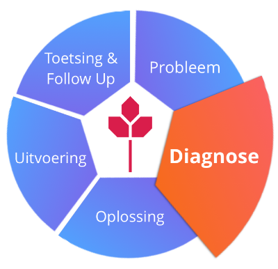 140326 rood schema diagnose.png