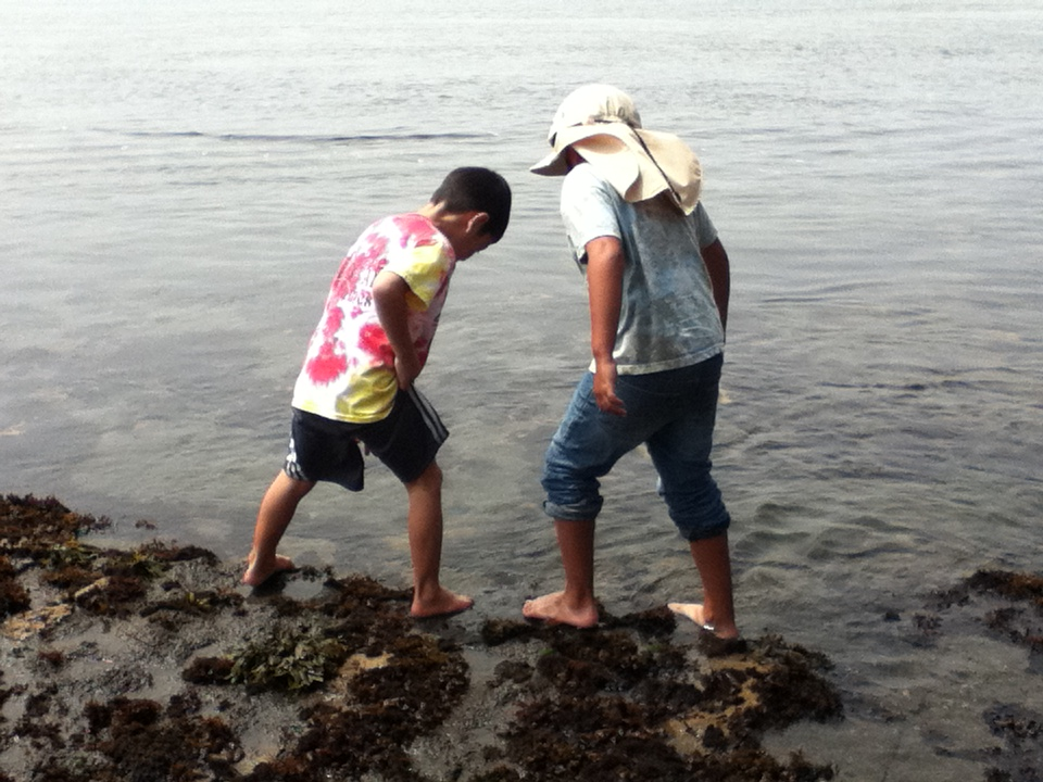 Explore tide-pools with your friends.