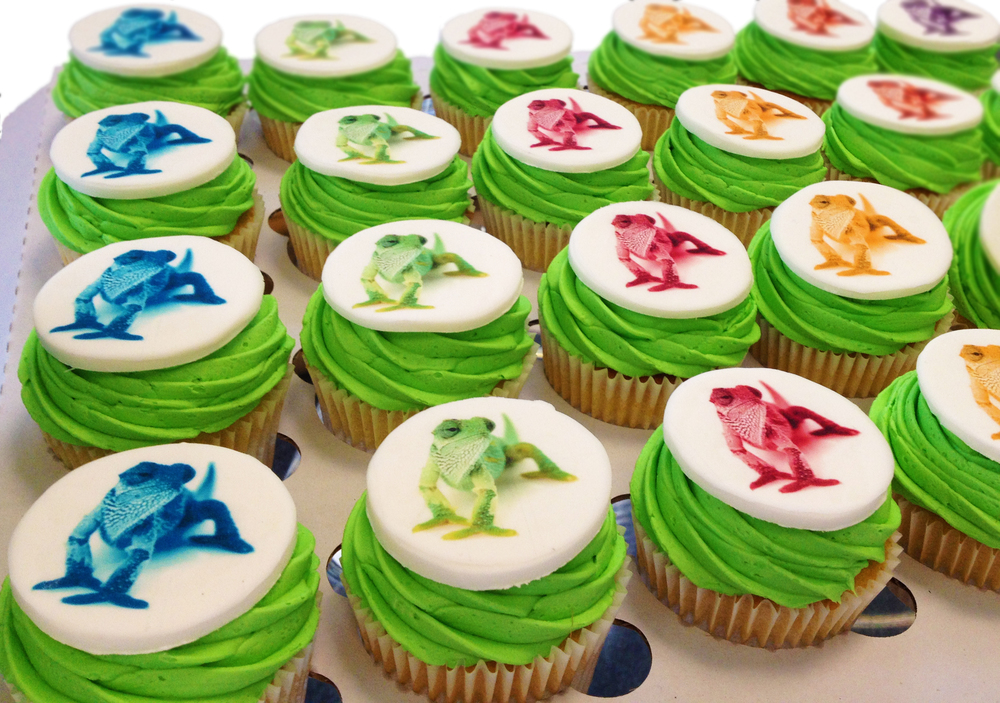24 coloured Chameleon Cupcakes!