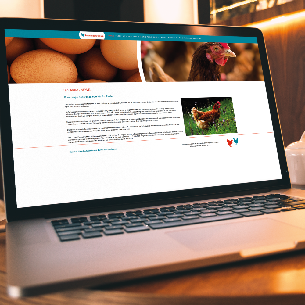 Free Range Info Website Design