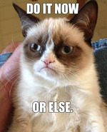 Grumpy cat hates you for being lazy.