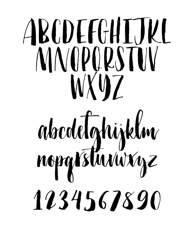 Portfolio — molly jacques modern calligraphy hand lettering