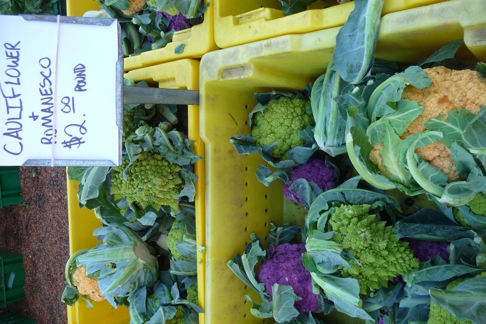 Colorful Cauli Family at Green CIty Market