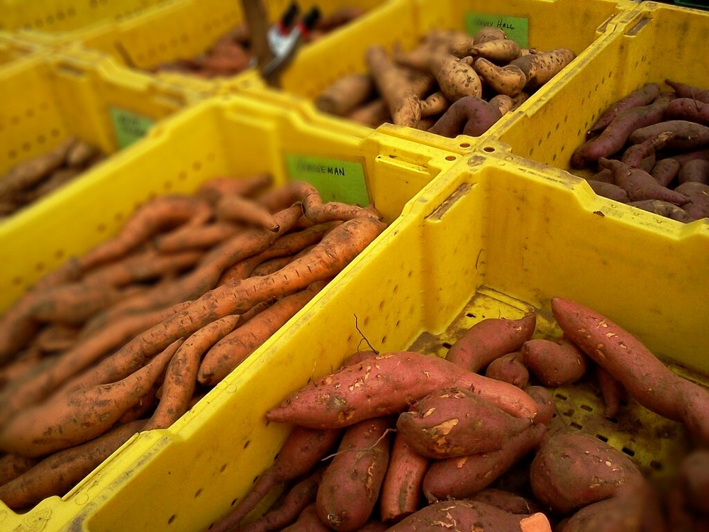 Potatoes at Green City Market