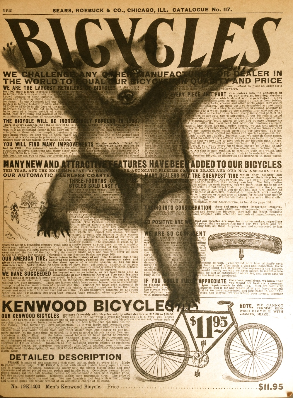 Bearcycles, 2015 Charcoal on antique catalog