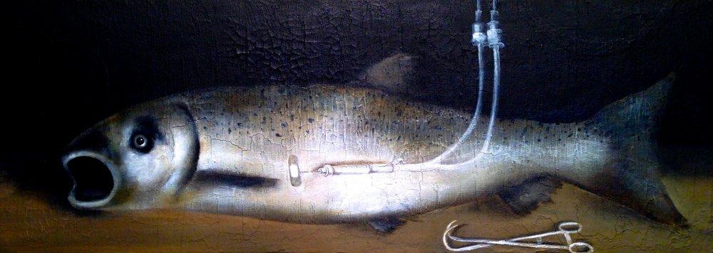 Still Life with GMO Salmon, 2016   Acrylic, oil, texture medium on canvas