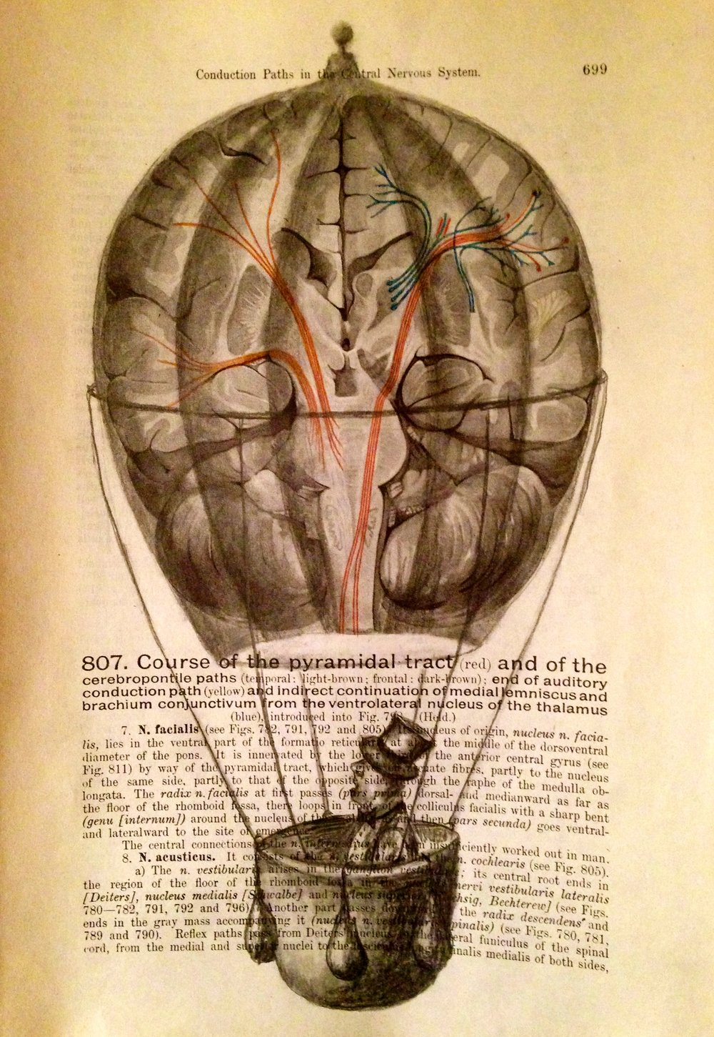 Conductive Current, 2017 Charcoal on antique medical paper