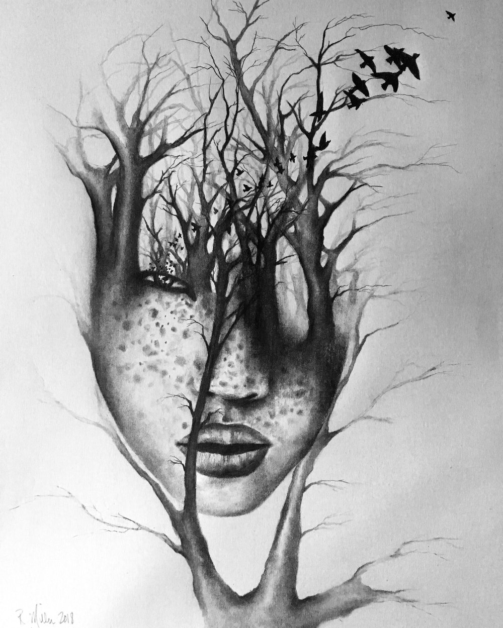 Rooted Series, 2018   #2 pencil on paper