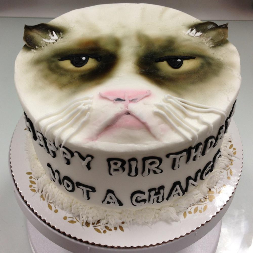 CatGrumpy.jpg