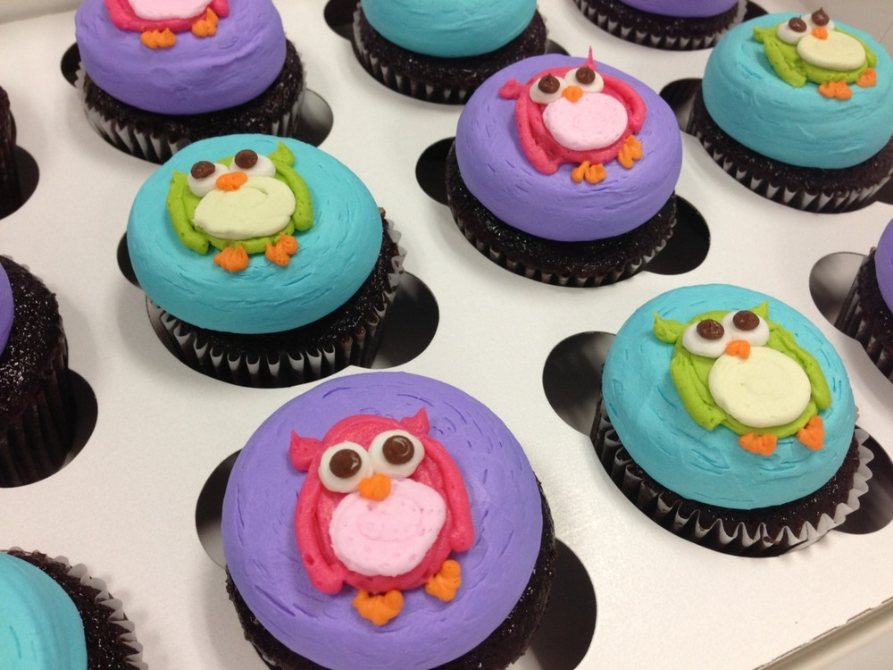 Owls on Cupcakes