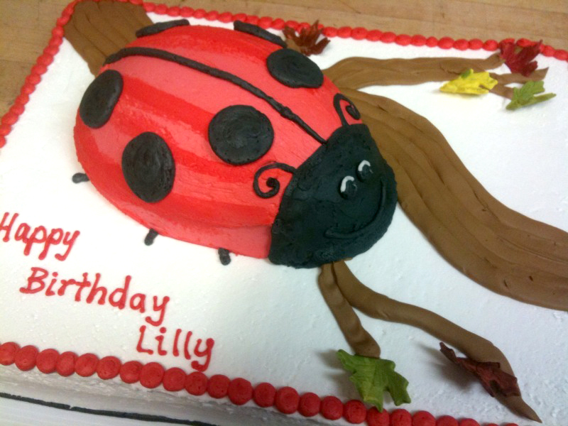 Lady Bug Cake on Cake!