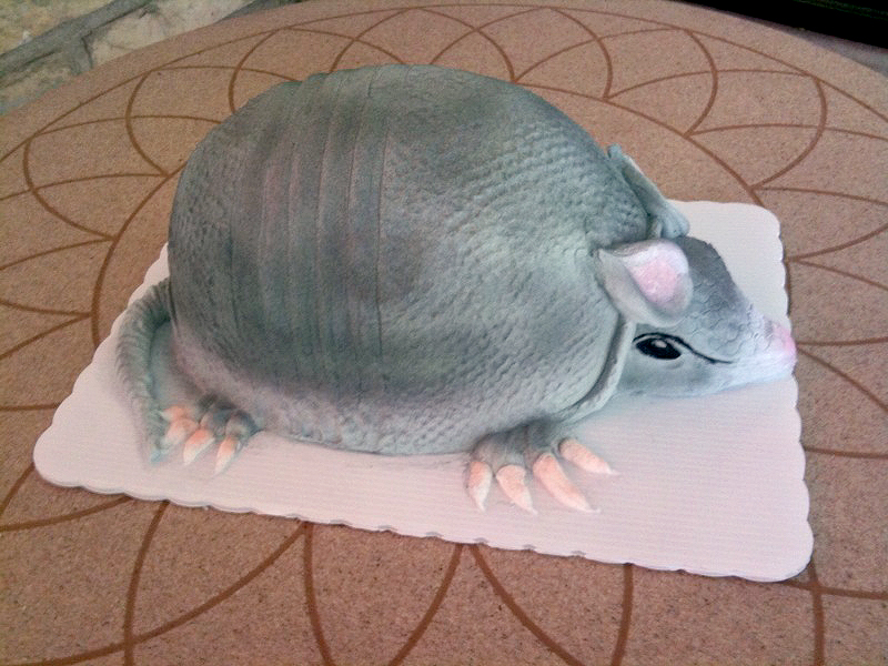 Armadillo Shaped Cake