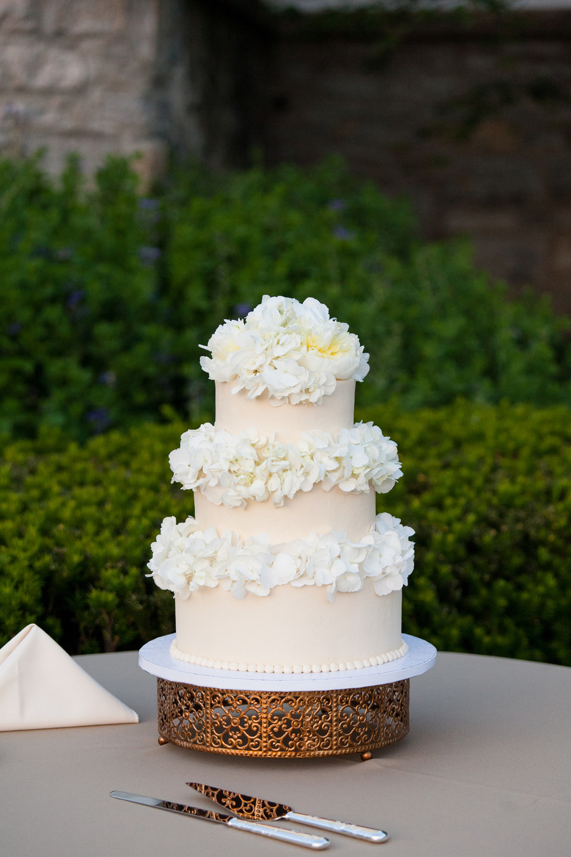 stump-cake-1000.jpg