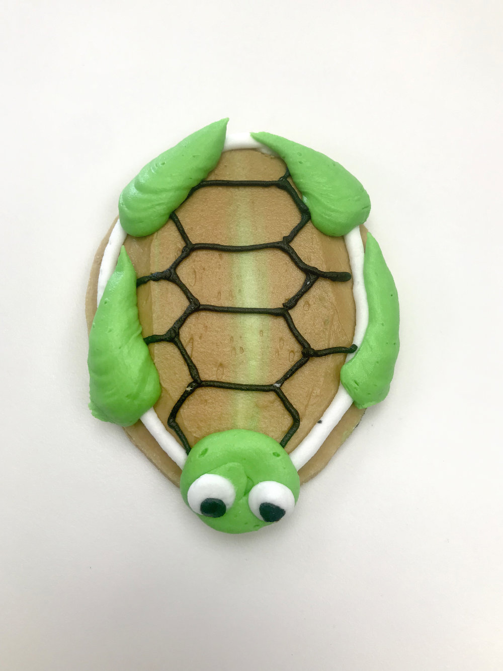 SeaTurtleCutout.JPG