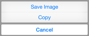 Buttons that appear in iOS when you tap and hold a picture in safari to allow you to save it.