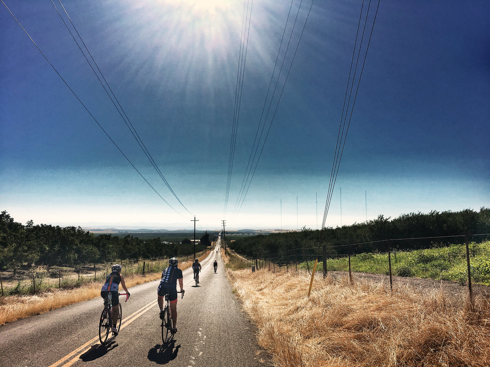 cyclists participating a group ride held by a local bike shop riding through the rural countryside of Central Valley of California