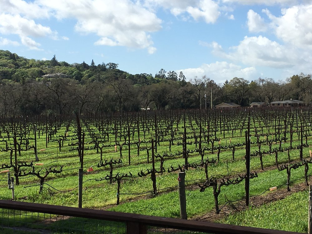 Napa Valley -   $1.8M 1st Position Loan