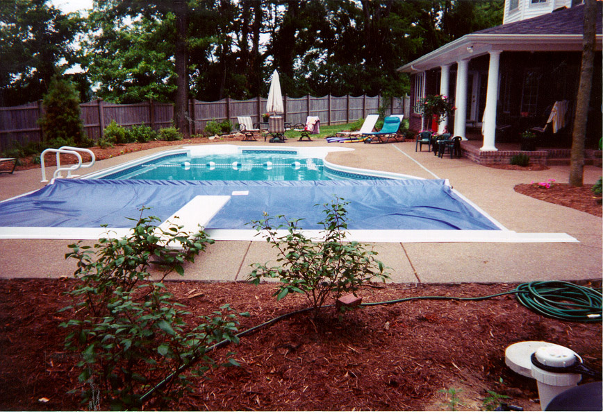 Recessed Top Guide Shaped Pool.JPG