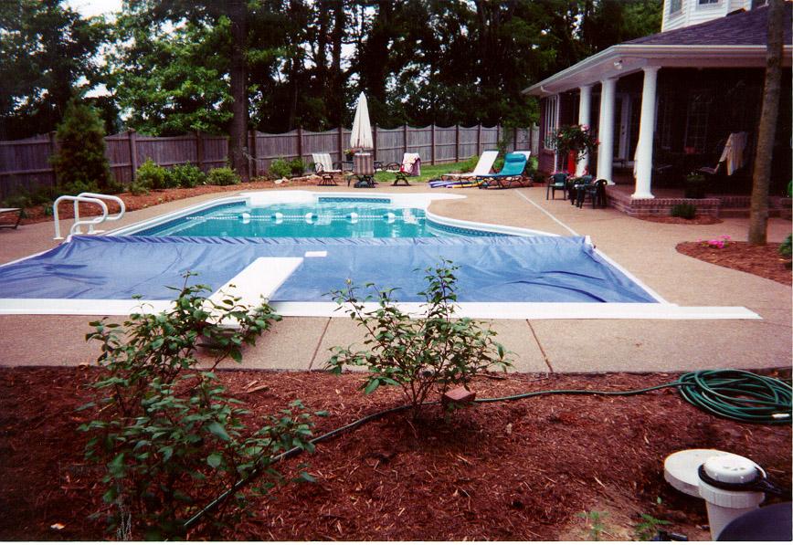 Recessed Top Guide Shaped Pool.JPG