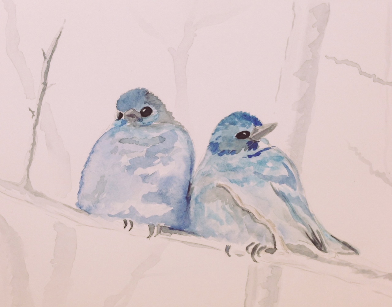 Our furnace went on strike at some point last night and we woke to a very chilly house! Now that it's fixed and I'm very appreciative of the warmth, I decided to post some winter birdies.