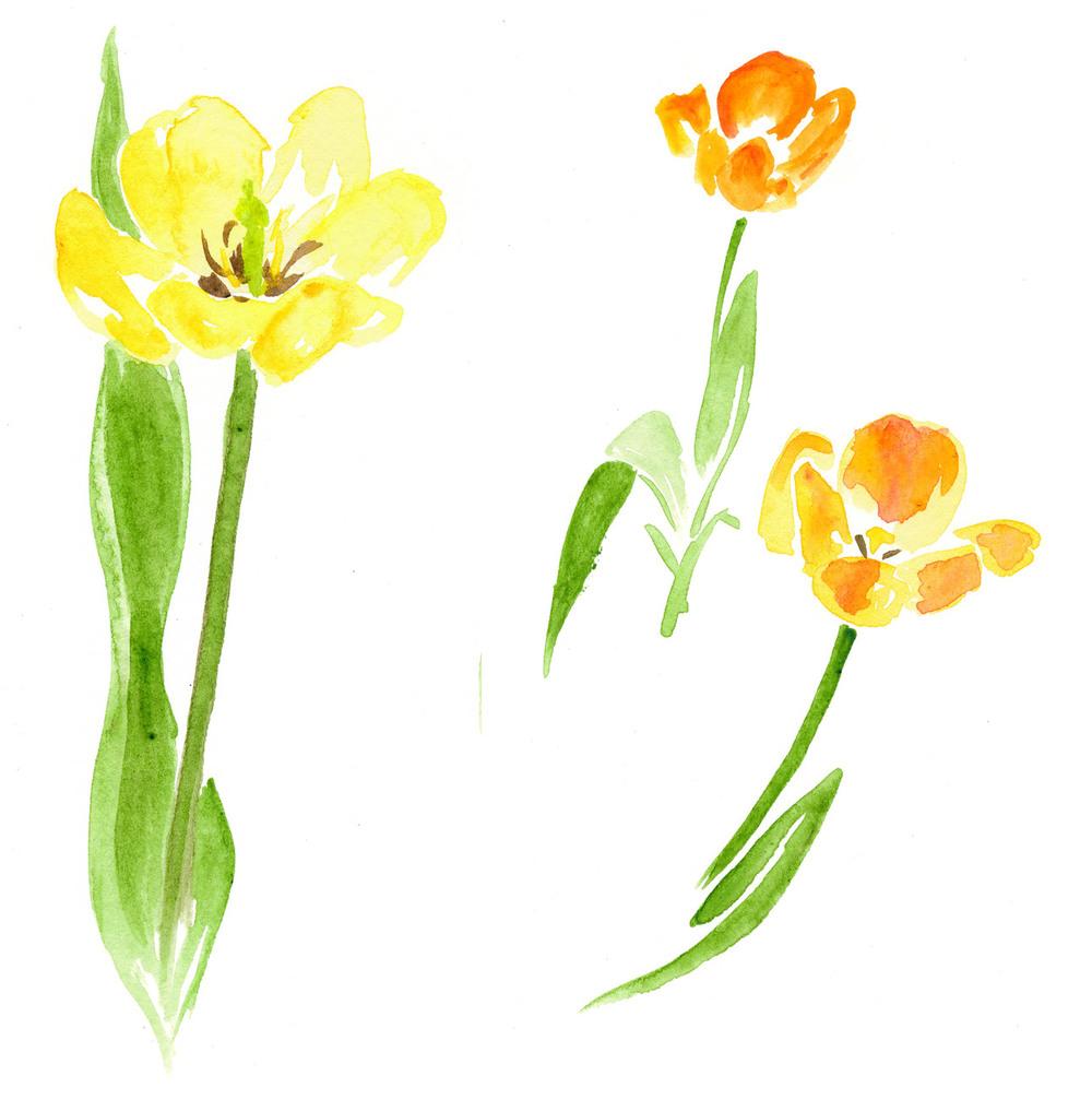 drawingsarah.com_flower3.jpg