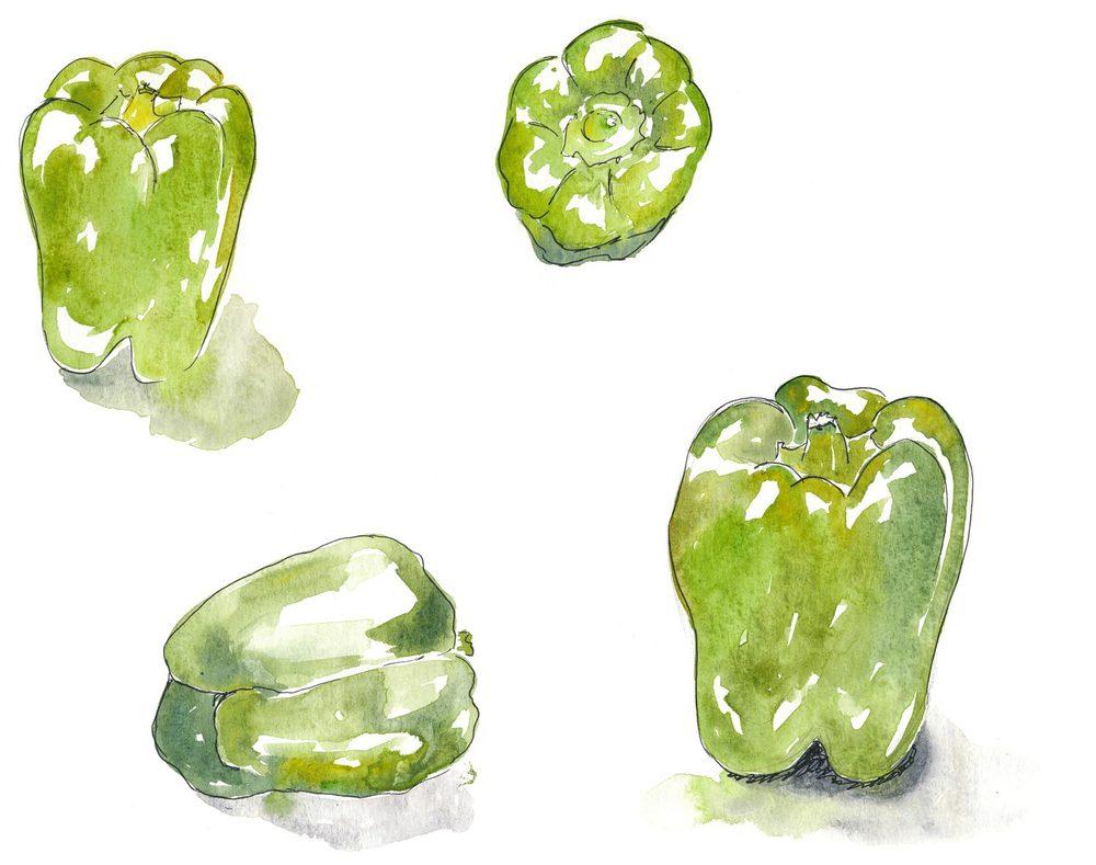 drawingsarah.com_peppers.jpg