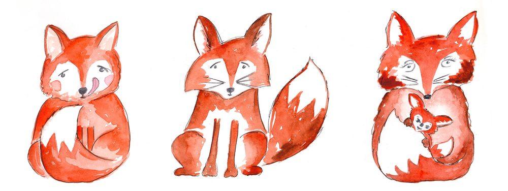 drawingsarah.com_fox.jpg