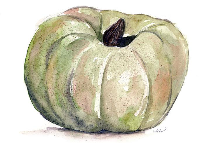 drawingsarah.com_pumpkin.jpg